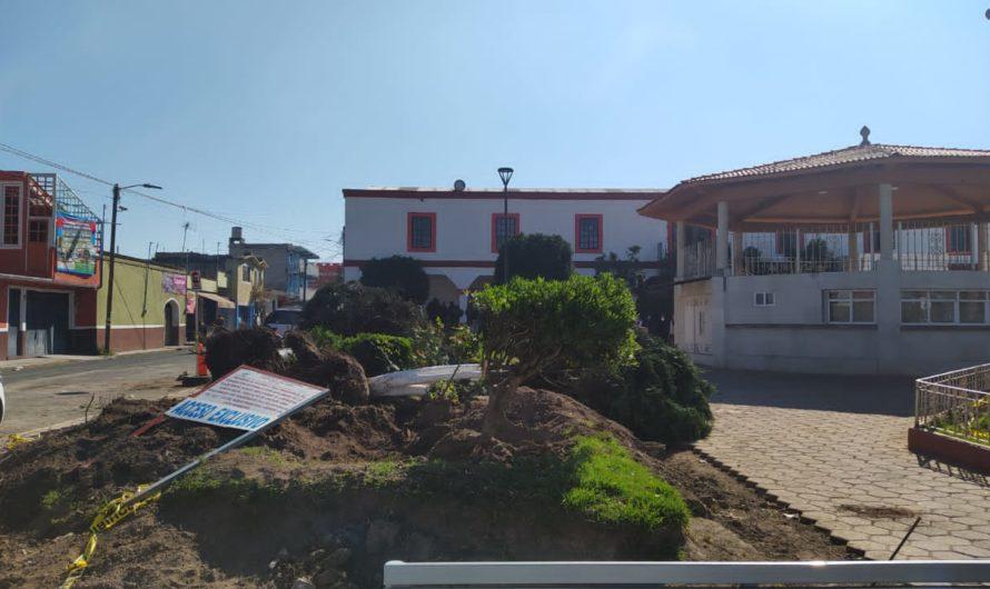 Gobierno de Atizapán poda árboles para poner cemento